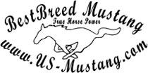 us-mustang.com