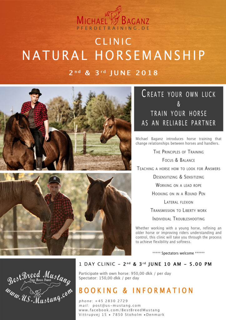 Natural Horsemanship Workshop